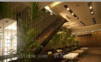 青柏设计的设计师家园-室内设计,效果图,装修