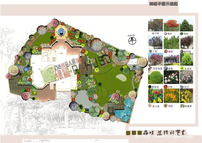 庭院植物搭配平面图